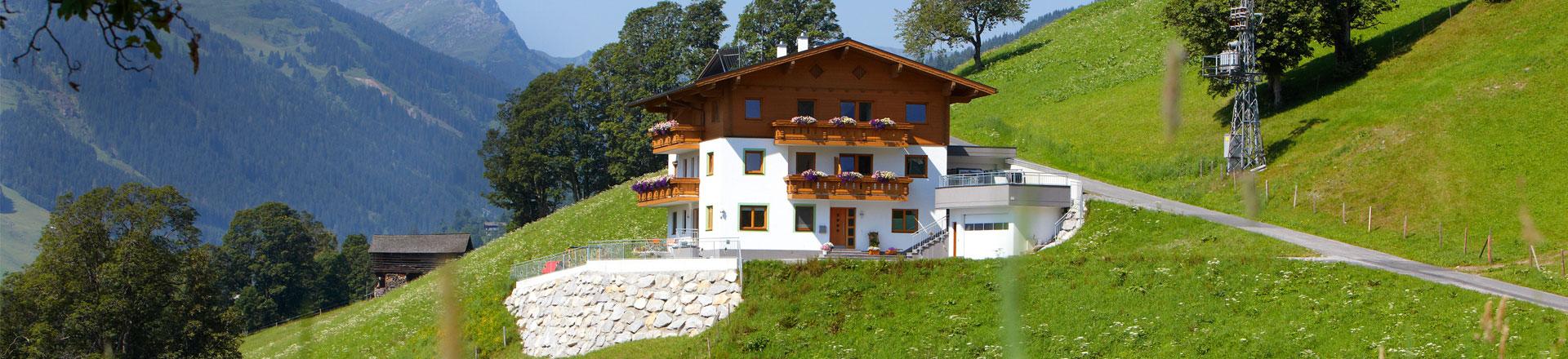 Saalbach Blick Appartements & Berggasthaus Bärnalm in Saalbach